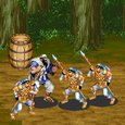 Dynasty Warrior Game